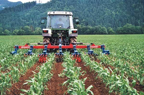 4.-rollstar-cultivators