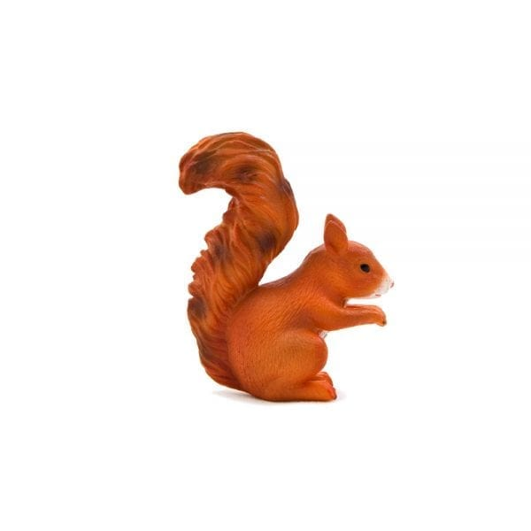 moj387031-red-squirrel-standing